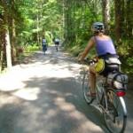 pedalando nel bosco
